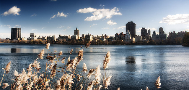 Photo du lac de Central Park, New York