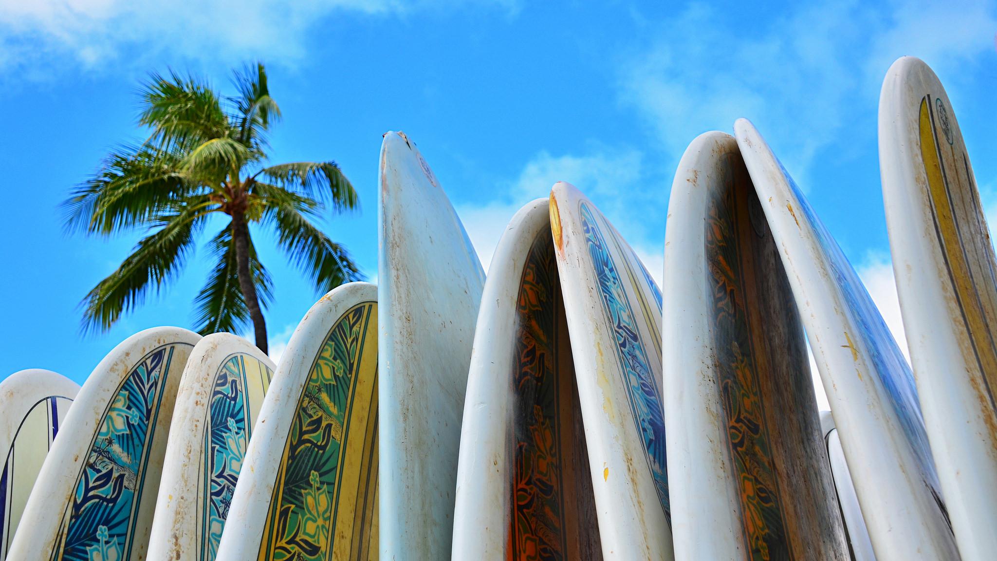 plusieurs planches de surf collées les unes aux autres