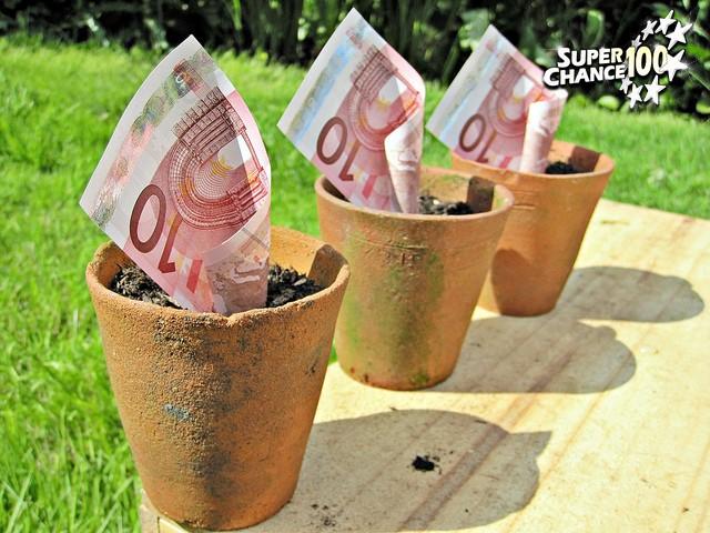 Des pots de fleur avec des billets de 10 euros.
