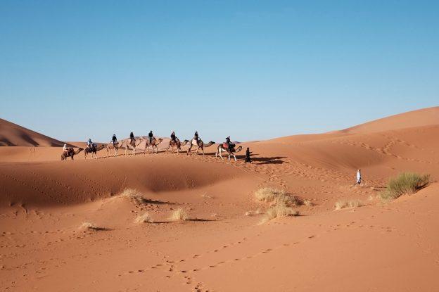 Un voyage en Egypte.